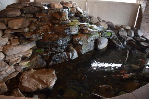 Patio Fish Pond